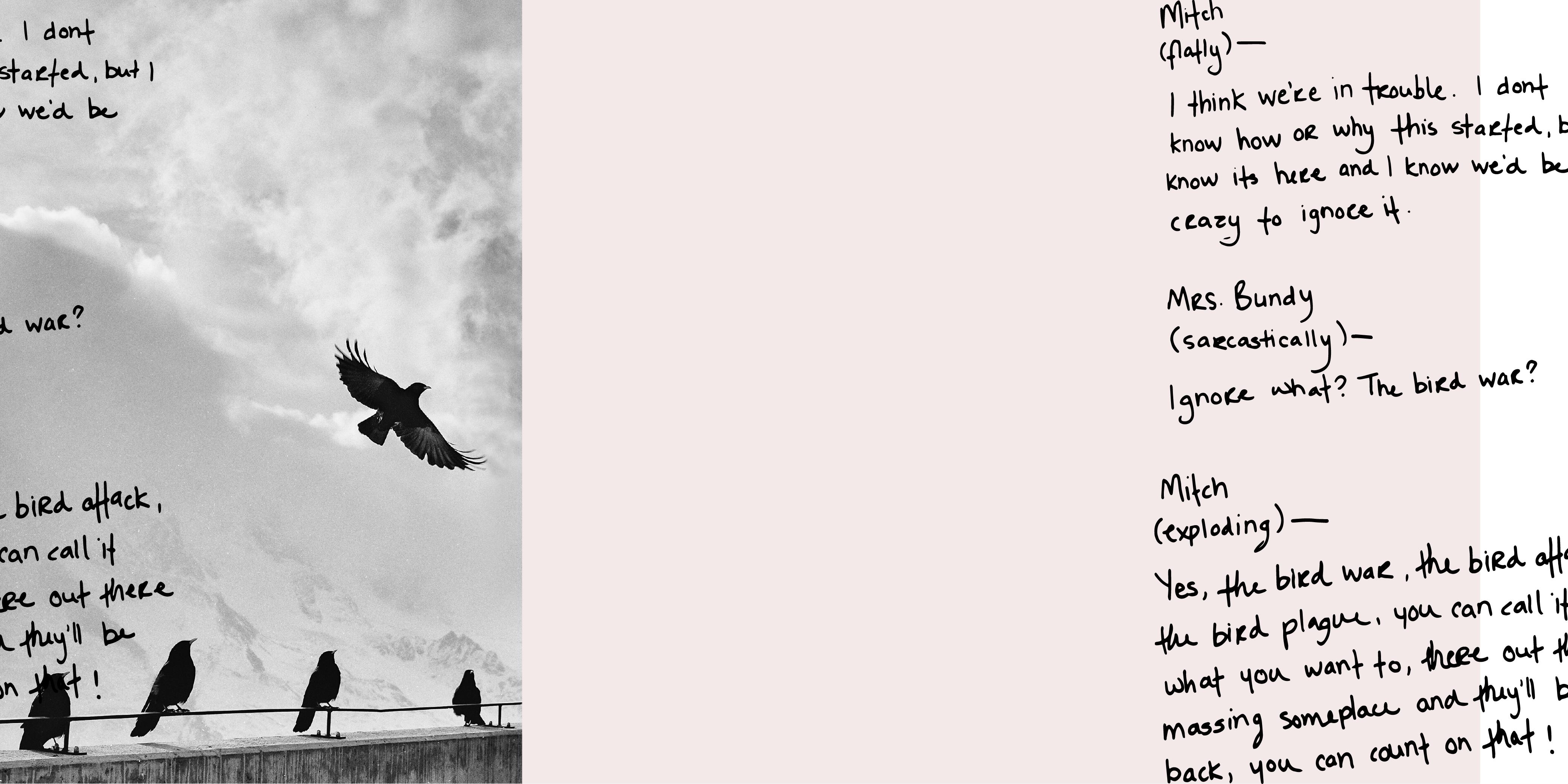 The Birds 2: Bohemian Waxwings